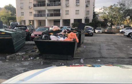 עיריית חולון תפנה את מכולות האשפה (הצפרדעים) מהרחובות ומהחניות הציבוריות